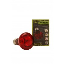 Komodo Infrared Spot Bulb ES Screw
