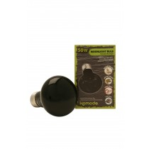 Komodo Moonlight Bulb ES Screw