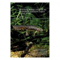 Chimaira Lissotriton vulgaris (German)