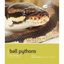 Pet Expert Ball Pythons