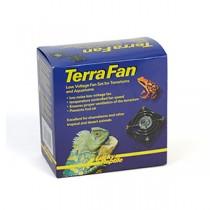 Lucky Reptile Terra Fan