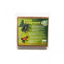 Lucky Reptile Coco Background 30 cm
