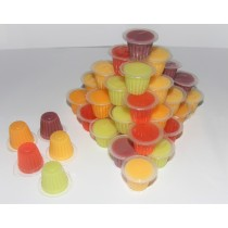 Online Reptile Jelly Pots mixed