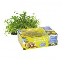 ProRep Tortoise Feed Growing Kit