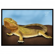 CC Greetings Card Bearded Dragon