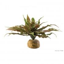 Exo Terra Star Cactus PT-2982