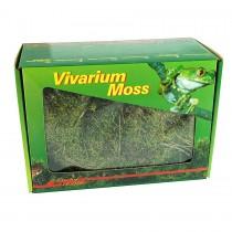 Lucky Reptile Dry Vivarium Moss 150g VM-150