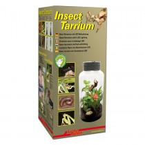 Lucky Reptile Insect Tarrium 5 Litre IT-5